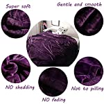 LBRO2M-Fleece-Bed-Blanket-Queen-Size-Super-Soft-Warm-Fuzzy-Velvet-Plush-Throw-Lightweight-Cozy-Couch-Blankets-90×90-Inch-Purple