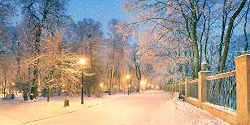 AOFOTO 20x10ft Winter Snowing Night Scene Backdrop Country Sunset Snow-Covered Trees Path Lighting Road Lamp Snow Landscape Photography Background Family Kids Portrait Photo Shoot Props Wallpaper