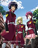 Mobile Suit Gundam Seed Destiny, Part 1 (Limited Edition) [Blu-ray]