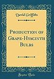 Amazon / Forgotten Books: Production of Grape - Hyacinth Bulbs Classic Reprint (David Griffiths)