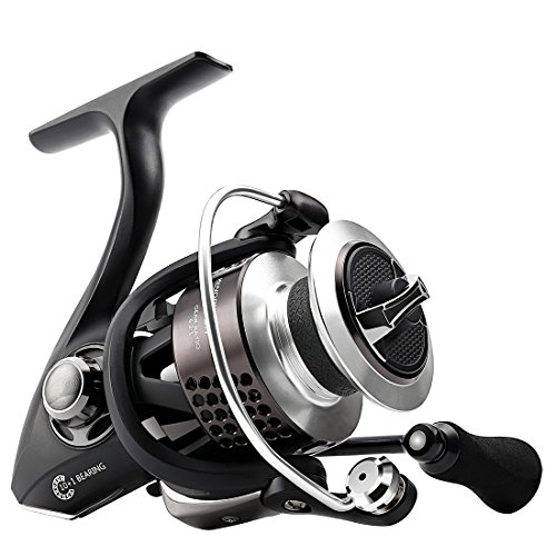 SeaKnight WR II Spinning Fishing Reel 6.2 1 Gear Ratio 10 1 BB Ultra Smooth Powerful 29LB Fishing Reel