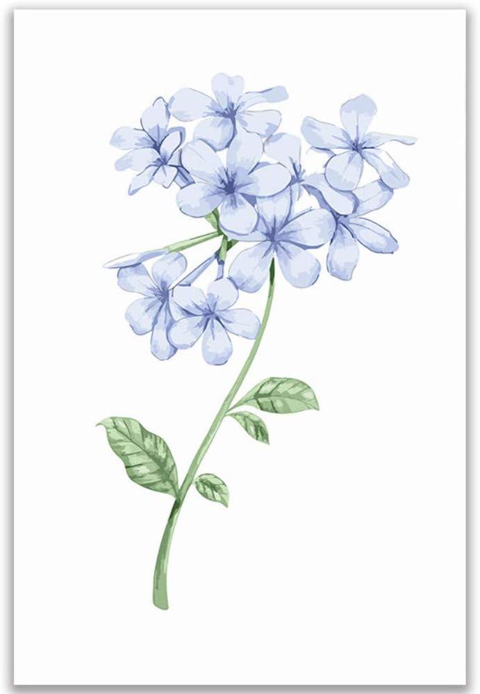 dxycfa Vergesslichkeit Pflanzen Blumen Bild Malen nach Zahlen mit Kits auf Leinwand zeichnen F/ärbung nach Zahlen Raum Kunst Wanddekor