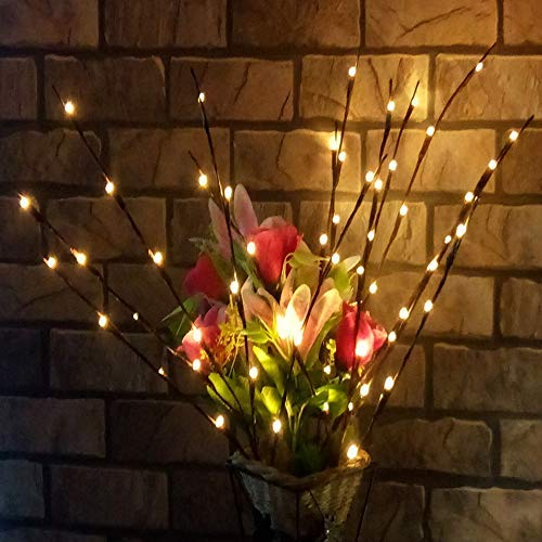 ARTSTORE 20 Inches 20 LED Led Lighted Twig Branches,Tall Vase Filler Willow Twig Lighted Branch Battery Powered Decorative Lights Christmas Home Decoration (2 Packs, Warm White)