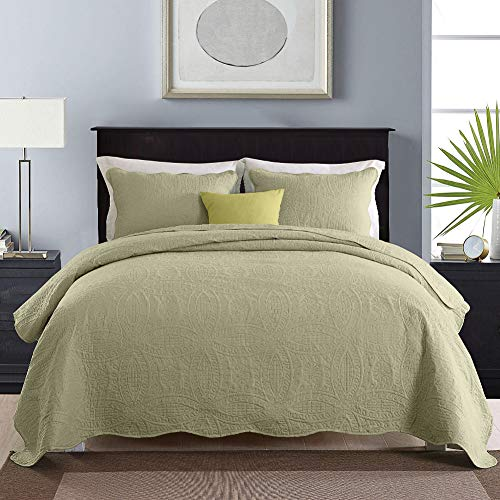 NEWLAKE 3 Piece Quilt Bedspread Coverlet Set,Embossed Coins Pattern, Queen Size