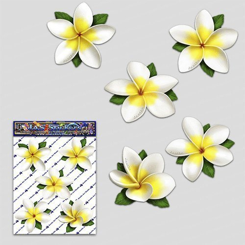 FLOWER White Single Frangipani Plumeria Small Pack Car Stickers Decals - ST00041WT_SML - JAS Stickers