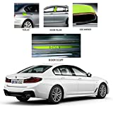 Healing Shield, Compatible with BMW 520d Invisible Protector Paint Scratch Protective Film FUEL TANK DOOR - 1 PCS Protection Sticker film for cars