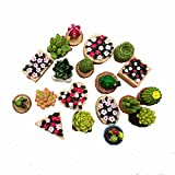 TATEELY 19 Pcs Flower Set Miniature Fairy Garden Home Decoration Mini Craft Dollhouse Micro Decor DIY Gift