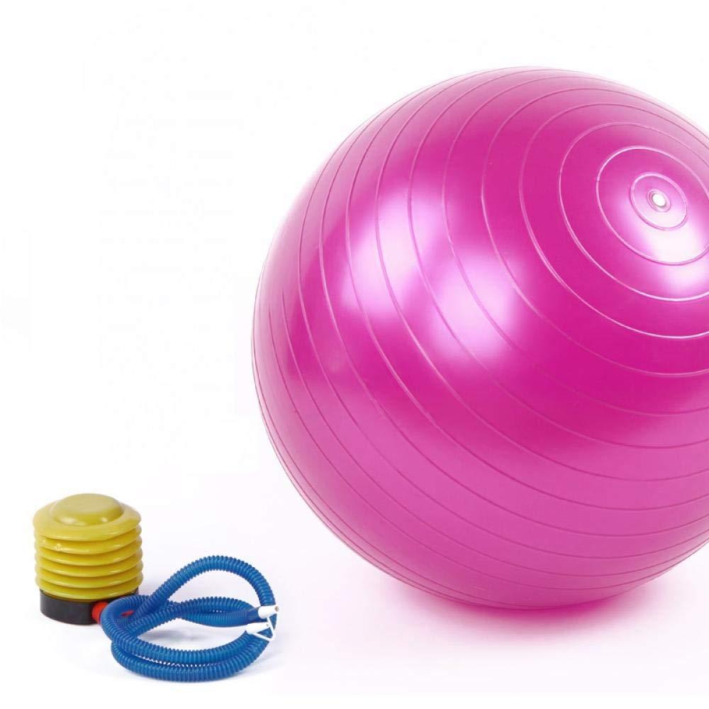 Fitness Pelota de Ejercicio 55CM Balón de Gimnasia Pelota de ...