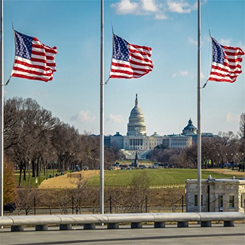 CSFOTO 8x8ft Background for Three American Flags with US Capitol Photography Backdrop White House United States Washington D.C Nation Freedom Democracy Patriotic Photo Studio Props Vinyl Wallpaper ()