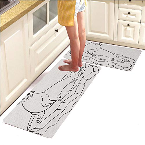 Alphabet Pebbles Page (Rugs Runner Rug -Non Skid Carpet Entry Rugs Runners for Kitchen and Entryway,Coloring Pages Mother Seal with her Little Cute Baby 1 (15