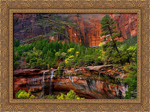 (Cascades and Desert Varnish at Emerald Pools, Zion National Park, Utah 24x19 Gold Ornate Wood Framed Canvas Art by Fitzharris,)