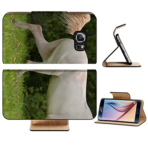 Isabella Floral Print (Luxlady Premium Samsung Galaxy S6 Edge Flip Pu Leather Wallet Case IMAGE 20327560 Young Akhal Teke horse run in the summer meadow)