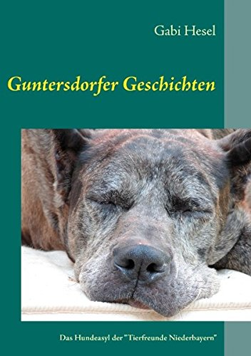 Guntersdorfer Geschichten (German Edition) ebook