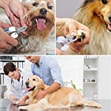 Dog Nail Clippers and Trimmer - Razor Sharp
