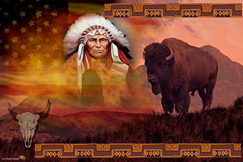 A By Gone Era Native American Indian chief and Buffalo Unique Photo College Art 24 x ()