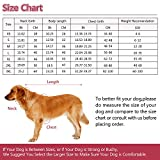 Kuoser Cozy Waterproof Windproof Reversible British style Plaid Dog Vest Winter Coat Warm Dog Apparel for Cold Weather Dog Jacket for Small Medium Large dogs with Furry Collar (XS - 3XL ),Red M