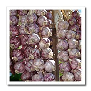 Danita Delimont - Canada - British Columbia. Braided garlic for sale at Saturday Market - 8x8 Iron on Heat Transfer for White Material (ht_226856_1)