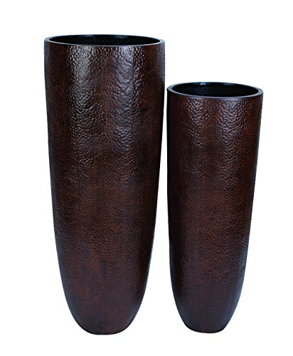 Benzara Vase with Wider Rim and Narrow Base, Set of 2 by Benzara