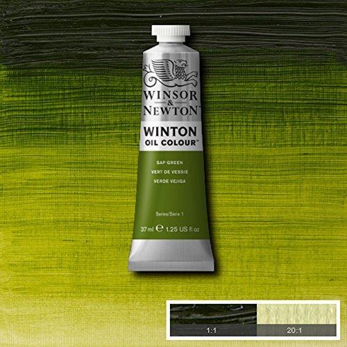 Winton Oil Paint - 7