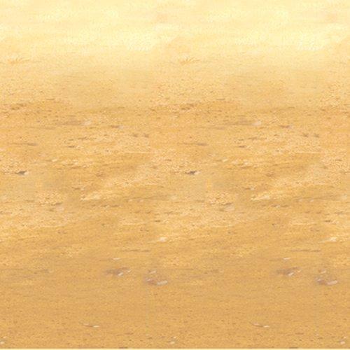 Sand Backdrop - 2