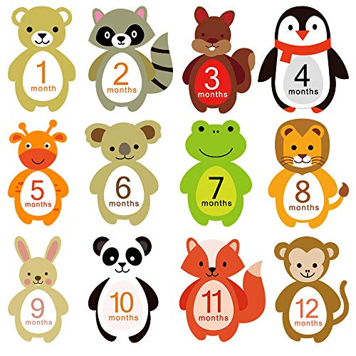 Xeminor Premium 14pcs Baby Milestone Stickers Baby Monthly Stickers Photo Props Accessories Baby Gifts Keepsakes