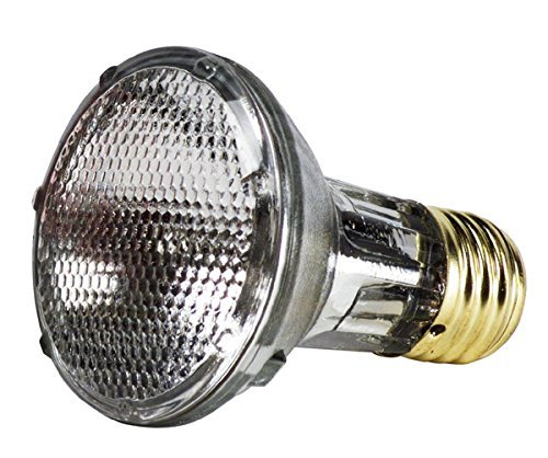 GE Energy Efficient Halogen PAR20 Light Bulb, 1 Year Life, Indoor Floodlight, 38 Watt, 490 Lumens, 2 Pack ()