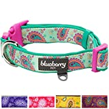 "Blueberry Pet 5 Colors Soft & Comfy Easter Spring Paisley Flower Print Neoprene Padded Dog Collar, Emerald Green, Small, Neck 12""-16"", Adjustable Collars for Dogs"