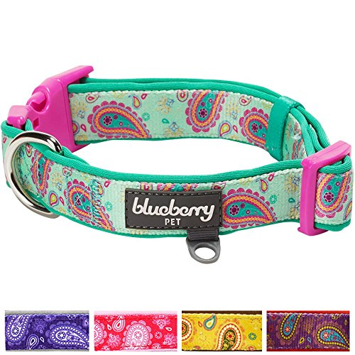 Blueberry Pet 5 Colors Soft & Comfy Paisley Flower Print Neoprene Padded Dog Collar, Emerald Green, Medium, Neck 14.5