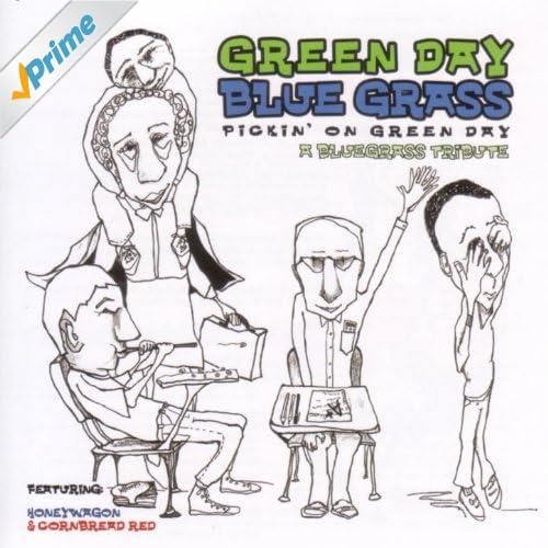 Green Day Bluegrass: Pickin' On Green Day. A Bluegrass Tribute