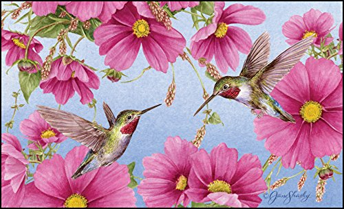 Hummingbird Floor Mat (Toland Home Garden Hummingbirds with Pink 18 x 30 Inch Decorative Spring Flower Floor Mat Bird Doormat)