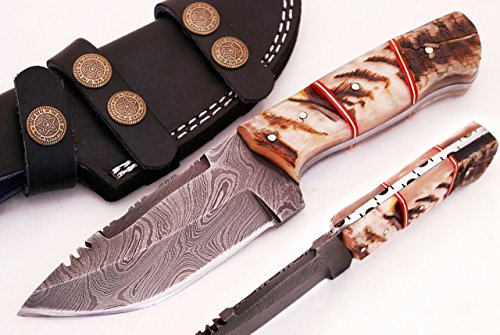 SharpWorld Beautiful Damascus Knife Made Of Remarkable Damascus Steel and Exotic Handle -Best Hunting Knife With Sheath TJ102 (Ram Horn) Best Fixed Blade Knife