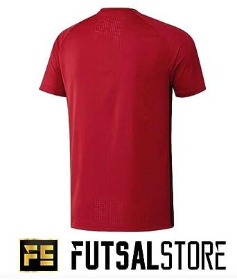 adidas Mens Denmark Football Team Short Sleeve Training Jersey T-Shirt Red  Blue  Amazon.co.uk  Clothing 677cef7b6