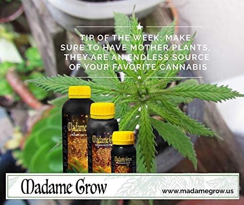 Madame Grow / Abono o fertilizante orgánico para Marihuana o ...