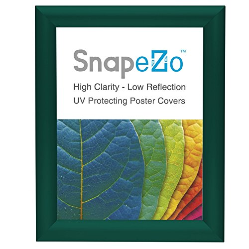 Photo Frame 8x10 Inch, Green SnapeZo 1