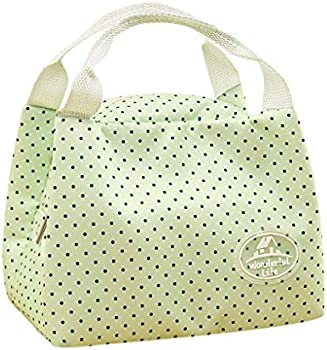 Insulated Thermal Canvas Lunch Bag/Picnic Bag