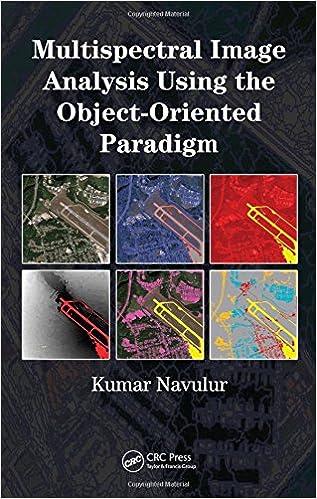 remote sensing book by meenakshi kumar
