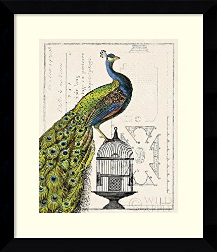 Framed Art Print, 'Peacock Birdcage I' by Sue Schlabach: Outer Size 25 x 29