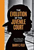img - for The Evolution of the Juvenile Court: Race, Politics, and the Criminalizing of Juvenile Justice (Youth, Crime, and Justice) book / textbook / text book