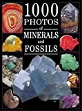 img - for 1000 Photos of Minerals and Fossils book / textbook / text book