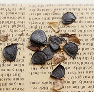 100% verdad Semillas Semillas de la novedad púrpura Amaryllis Hippeastrum Balcón Bonsai magníficos de la flor del color 50PCS
