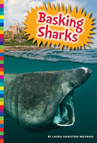 Basking Sharks ebook