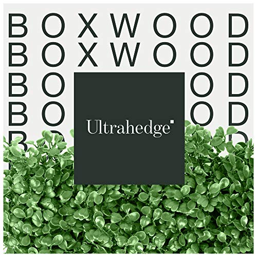 UltraHedge Artificial Light Green Small Boxwood Hedge for Indoor and Outdoor Fence Privacy Screen and Greenery Wall Backdrop Decor for Events | 20 x 20 Inches Panels | 12 Pack