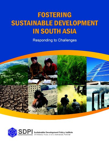 Fostering Sustainable Development in South Asia: Responding to Challenges