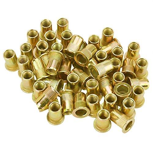 Tenflyer 50 PCS M10/ M12/ M8/ M5/ M6 / M3/ M4 de cabeza plana Rivet Nut de Instrumentos Muebles Decoració n (M5)