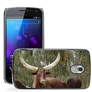 Super Stella Slim PC Hard Case Cover Skin Armor Shell Protection // M00105976 Animals Buffalo Buffalo Batusi Toro // Samsung Galaxy Nexus GT-i9250 i9250