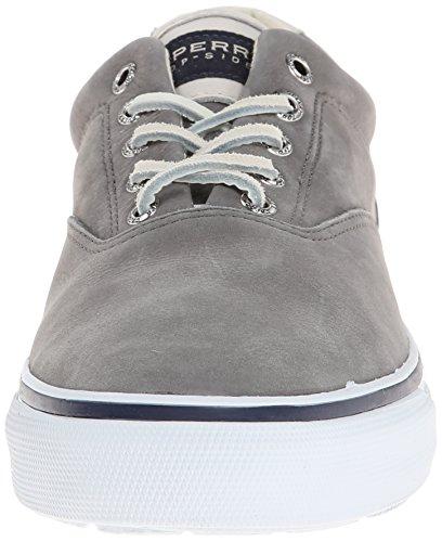 Sperry STRIPER CVO WASHABLE Herren Sneakers Grau (Grey)