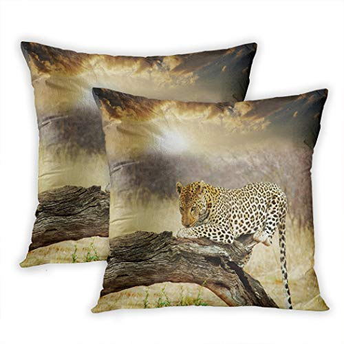 Oheymi Set of 2 Throw Pillow Covers 20x20 Inches Leopard Closeup Polyester Square Cushions Bedroom Couch Sofa Decor Pillowcases