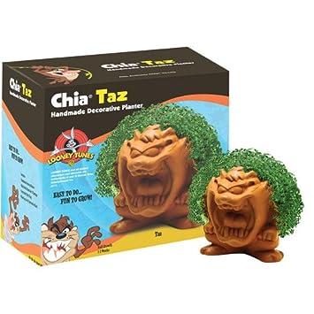 Amazon.com: As Seen On TV Chia Pets Chia Taz: Baby