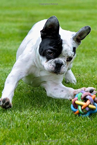 Read Online Darling French Bulldog Playing in the Park Dog Pet Journal: 150 Page Lined Notebook/Diary PDF
