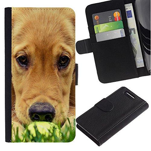 LASTONE PHONE CASE / Lujo Billetera de Cuero Caso del tirón Titular de la tarjeta Flip Carcasa Funda para Sony Xperia Z1 Compact D5503 / Labrador Golden Retriever Muzzle Grass Dog